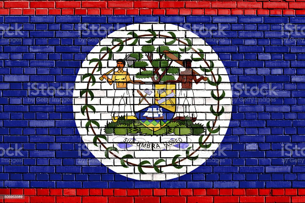 flag of Belize painted on brick wall stock photo