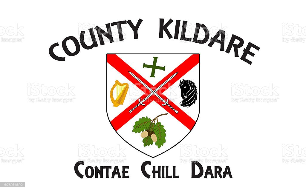 Flag of County Kildare is a county in Ireland stock photo