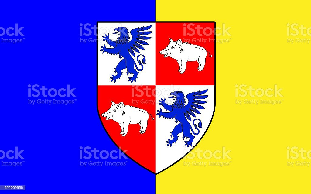 Flag of County Longford is a county in Ireland stock photo