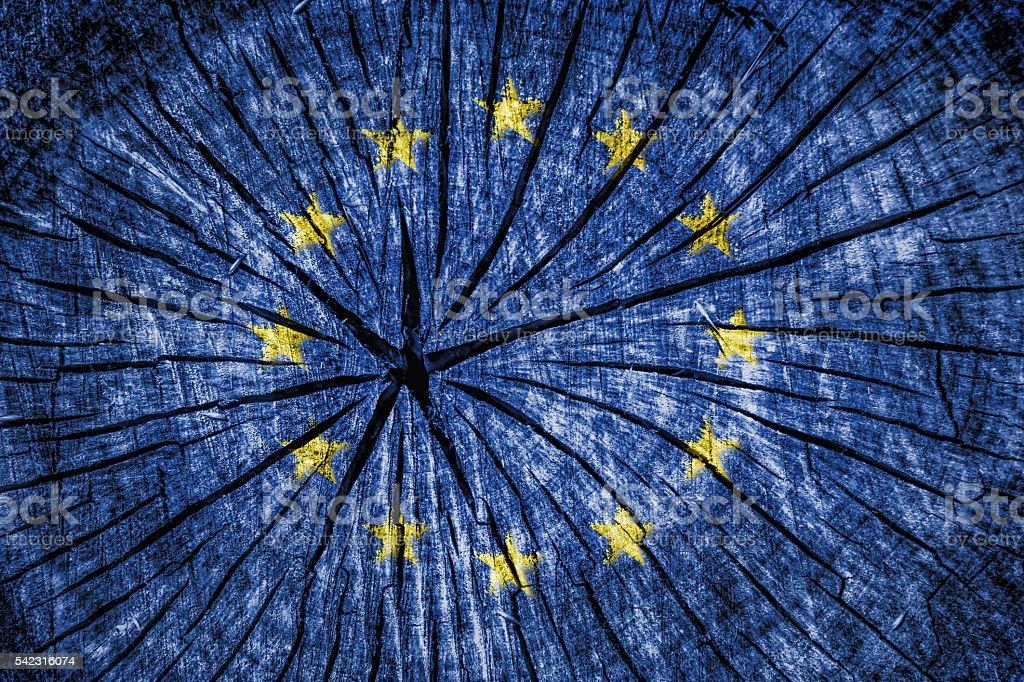 flag of  European Union stock photo