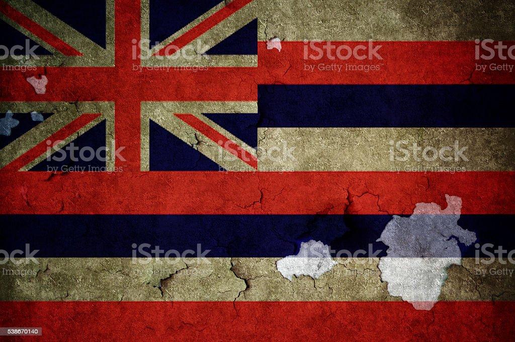Flag of Hawaii stock photo