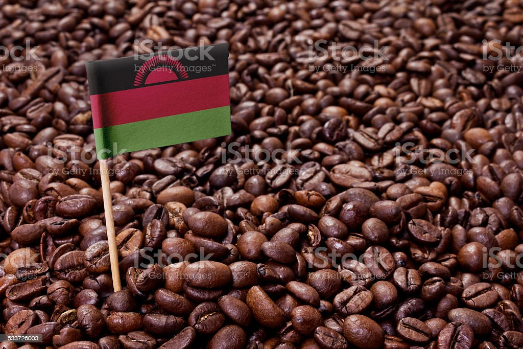 Flag of Malawi sticking in coffee beans.(series) stock photo