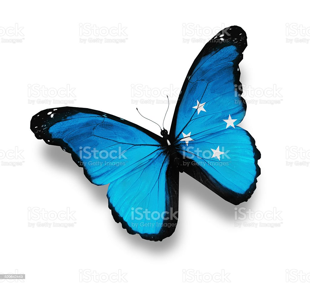 Flag of Micronesia butterfly, isolated on white stock photo