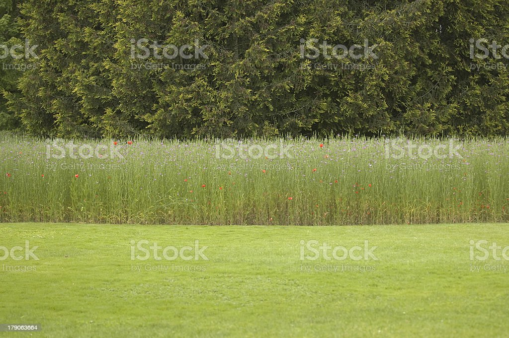 Flag of Nature royalty-free stock photo