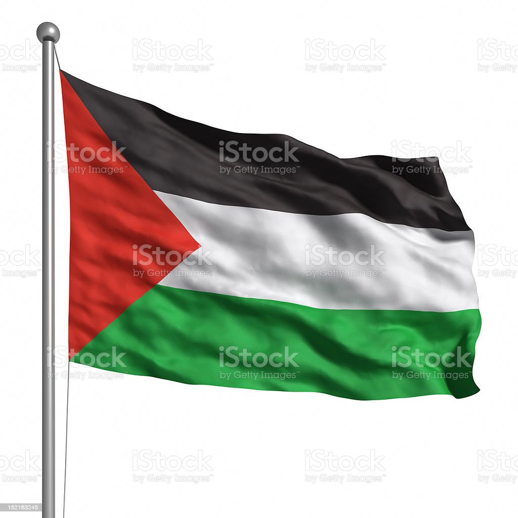 Flag of Palestine (Isolated) stock photo
