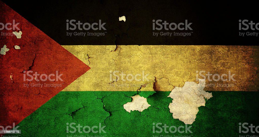Flag of Palestine stock photo