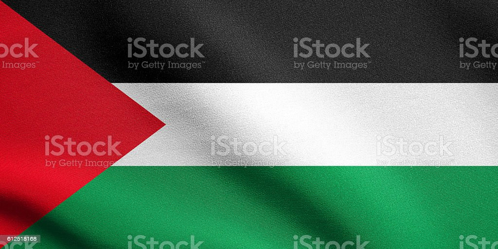 Flag of Palestine waving with fabric texture stock photo