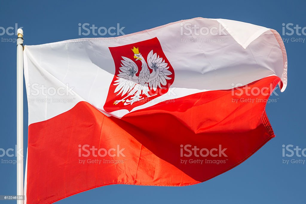 Flag of Poland With Crest, Waving In a Stiff Wind stock photo