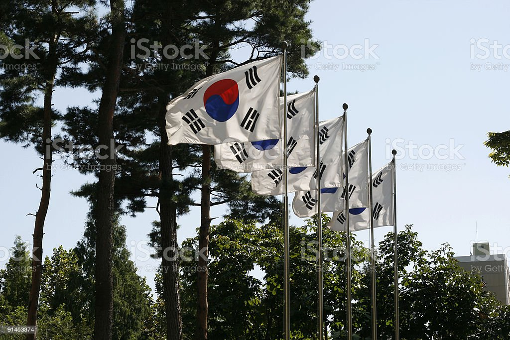 Flag of South Korea royalty-free stock photo