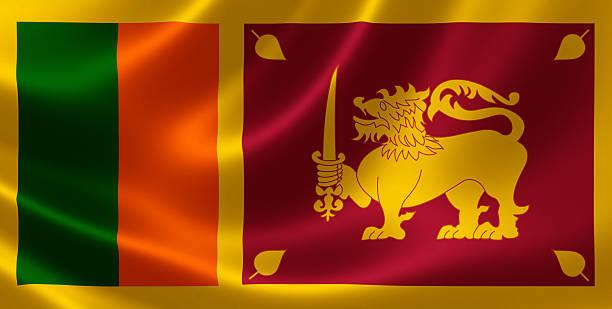 Image result for sri lanka flag