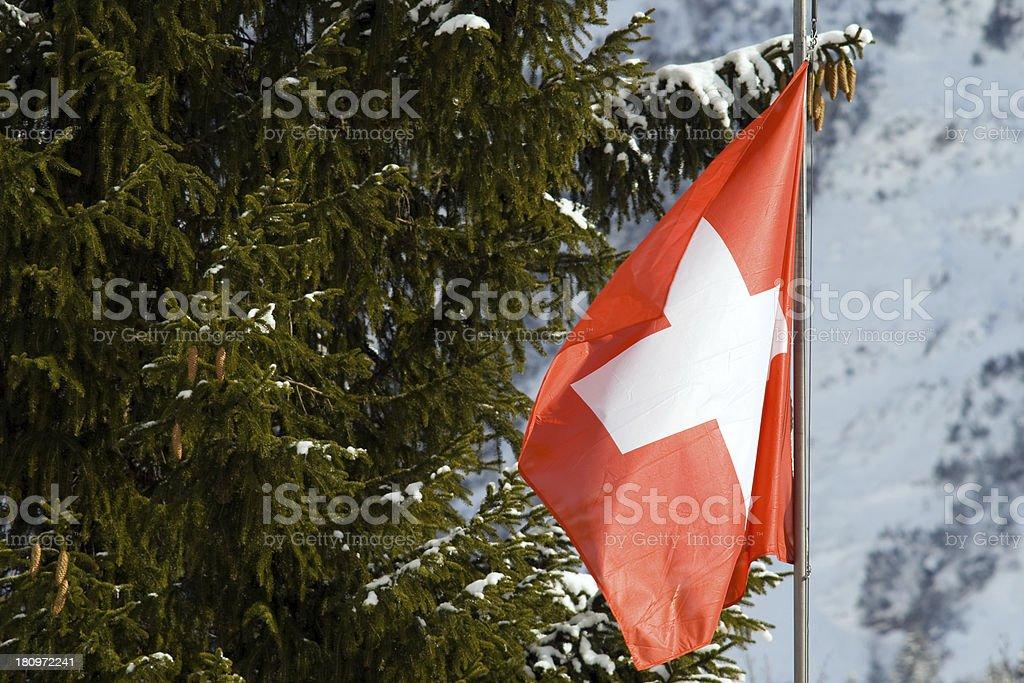 Flag of Switzerland royalty-free stock photo