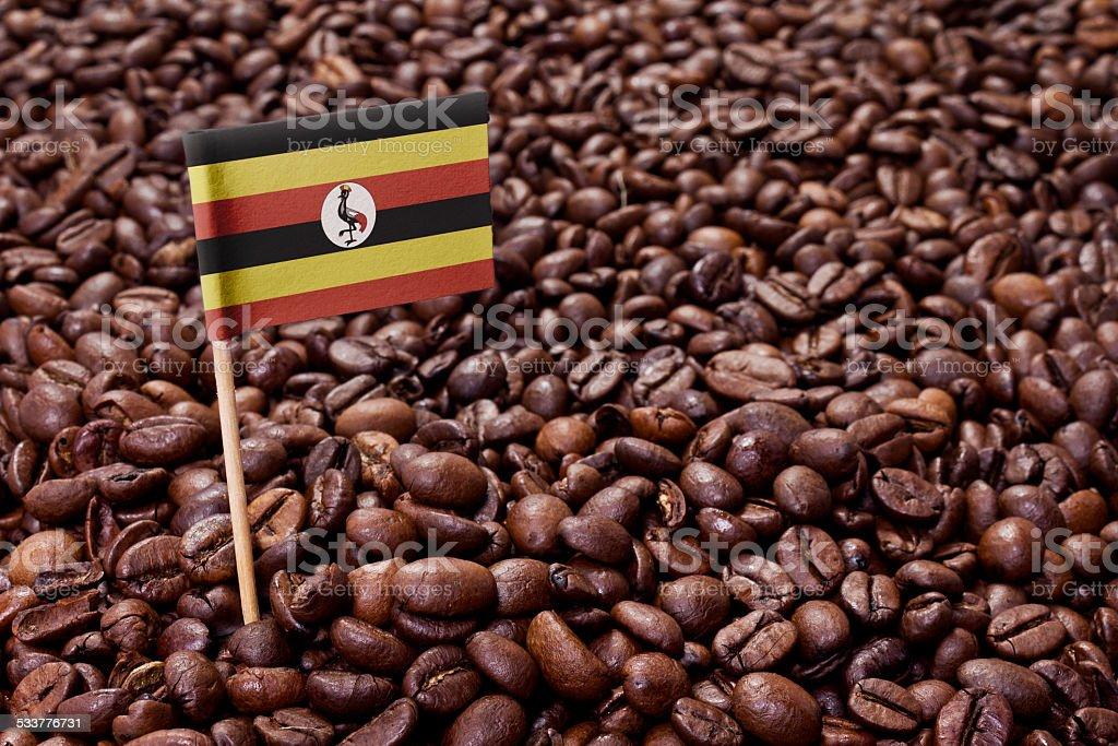 Flag of Uganda sticking in coffee beans.(series) stock photo