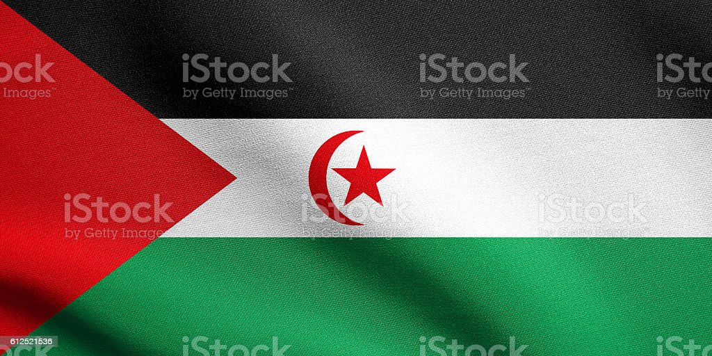 Flag of Western Sahara waving with fabric texture stock photo