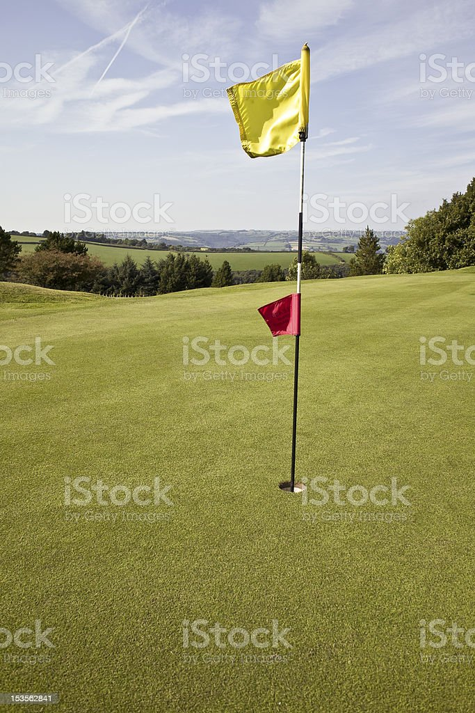 Flag on a golf putting green royalty-free stock photo