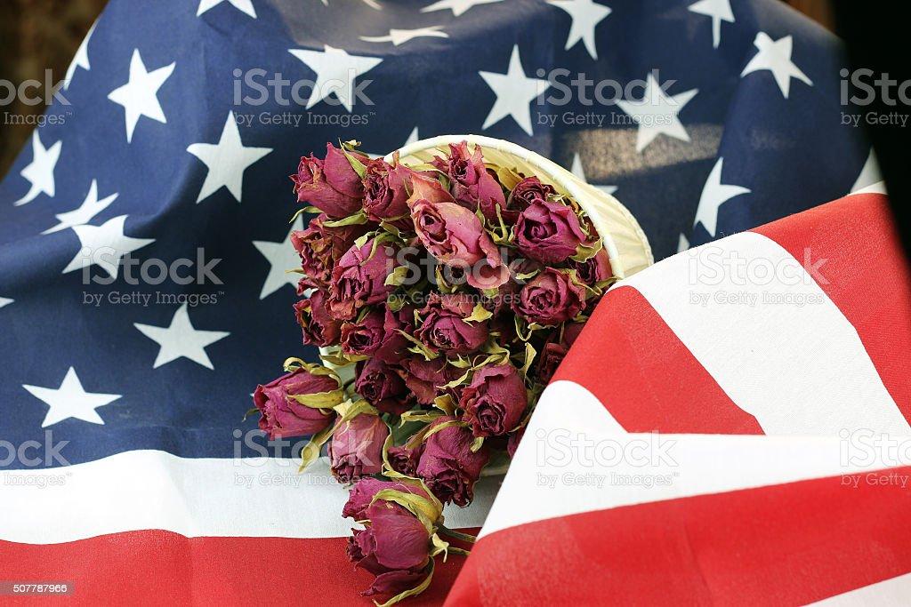 US flag rose flower stock photo