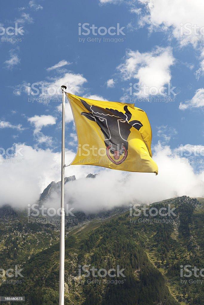 Flag the Canton of Uri stock photo