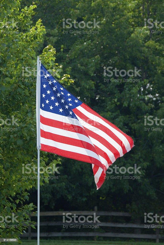 USA  Flag Waving in Breeze stock photo