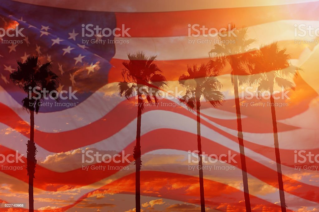 USA flag with palm trees stock photo
