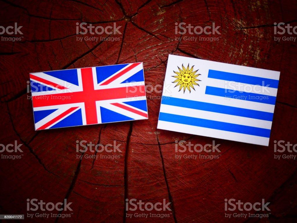 UK flag with Uruguaian flag on a tree stump isolated stock photo