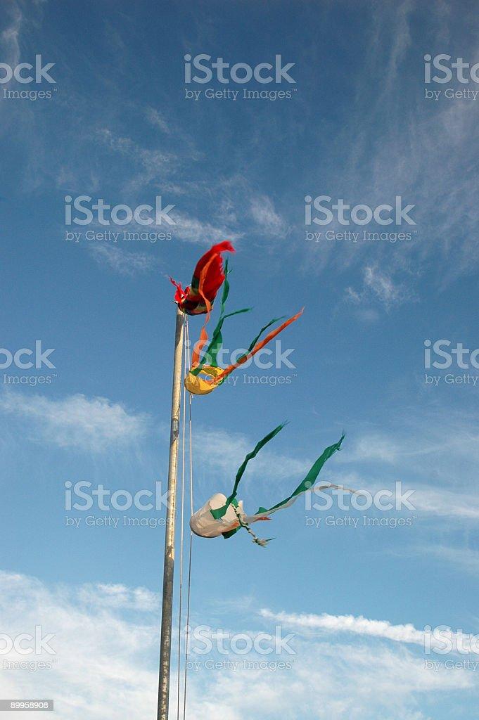 Flags a flyin' 1 stock photo