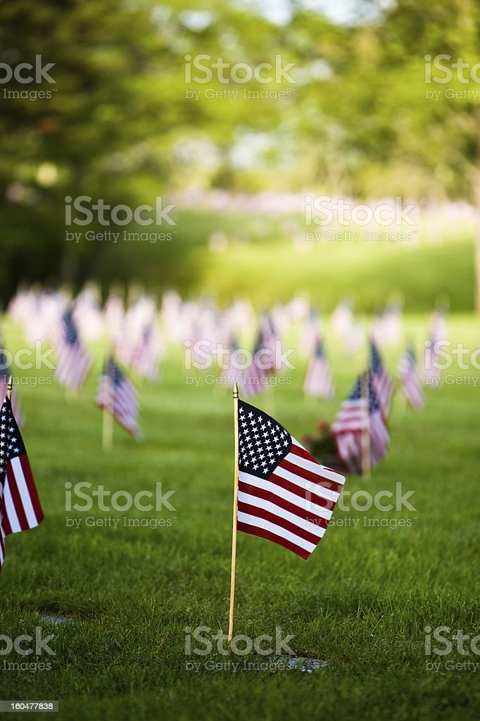 Flags adorn the National Cemetery stock photo