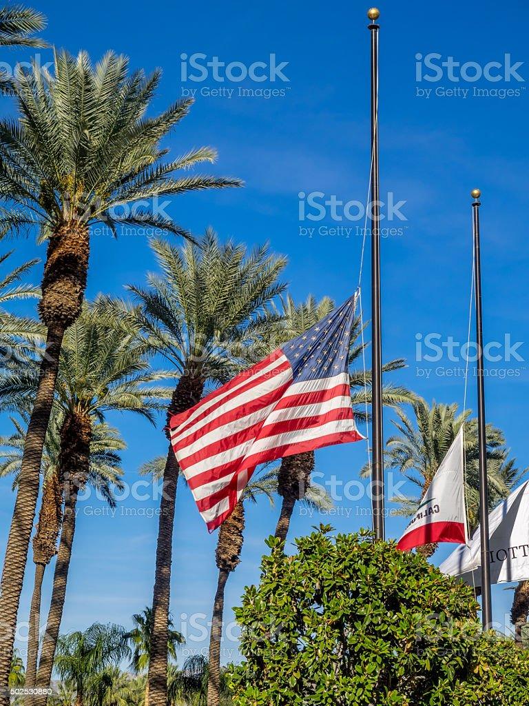 Flags at half-mast stock photo
