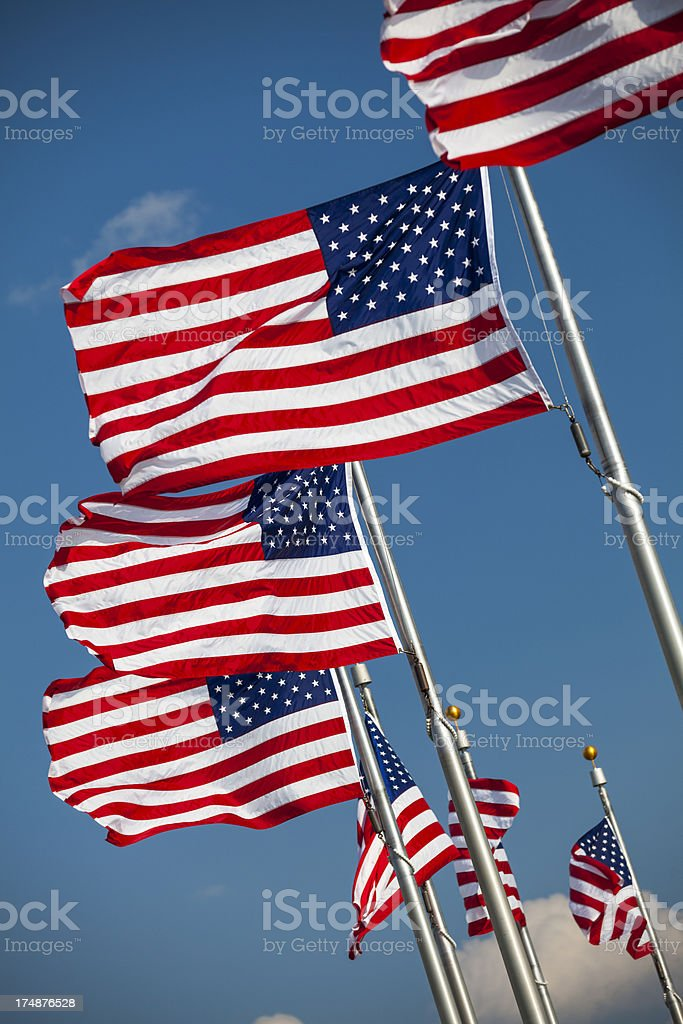 Flags by the Washington Monument royalty-free stock photo