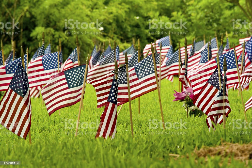 Flags in Remembrance royalty-free stock photo