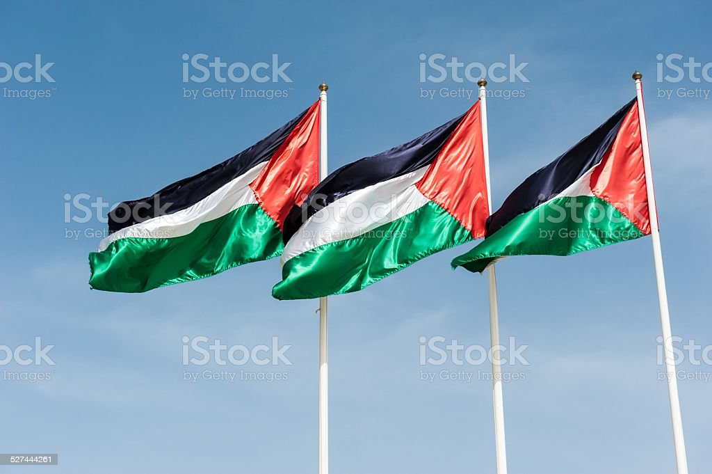 Flags of Palestine stock photo