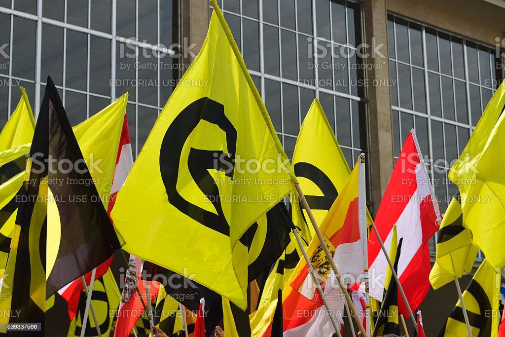 Flags of the identitarian movement stock photo