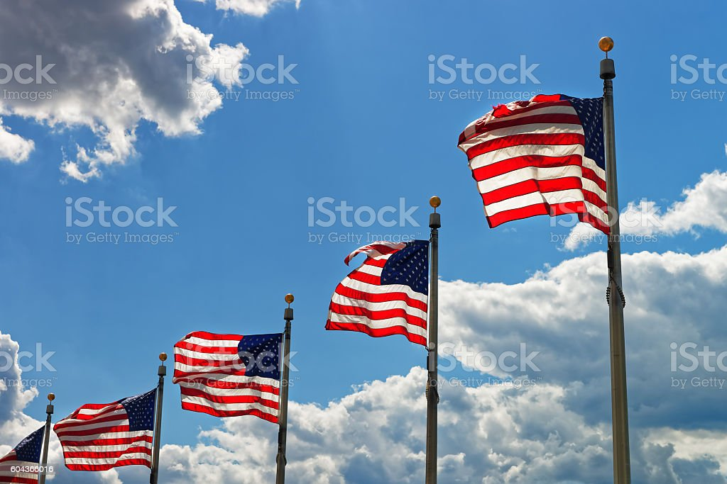 Flags of the United States of America in Washington DC stock photo