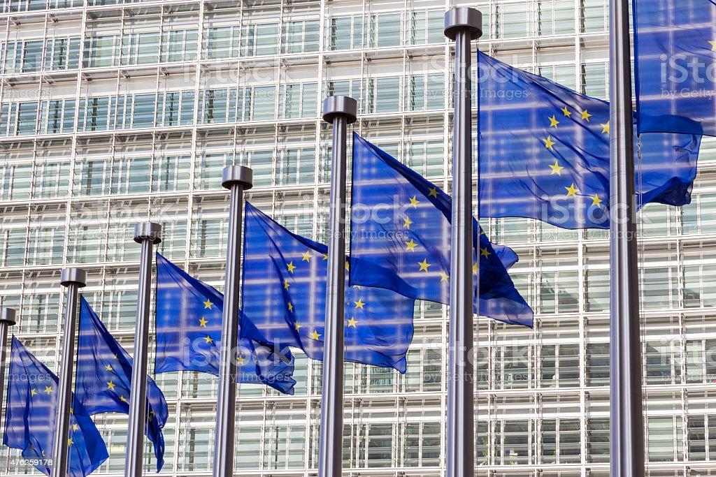 EU flags stock photo