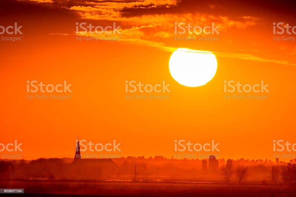 Flamboyant soleil stock photo
