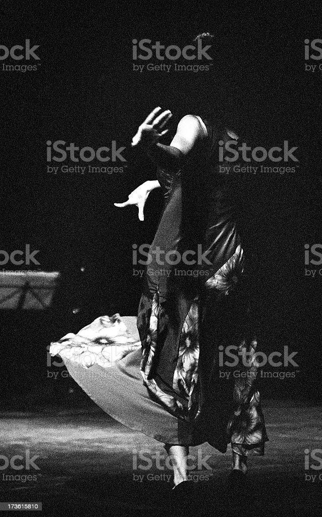 Flamenco away royalty-free stock photo