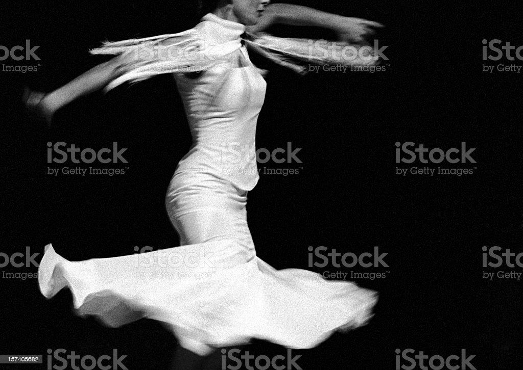 Flamenco flying stock photo