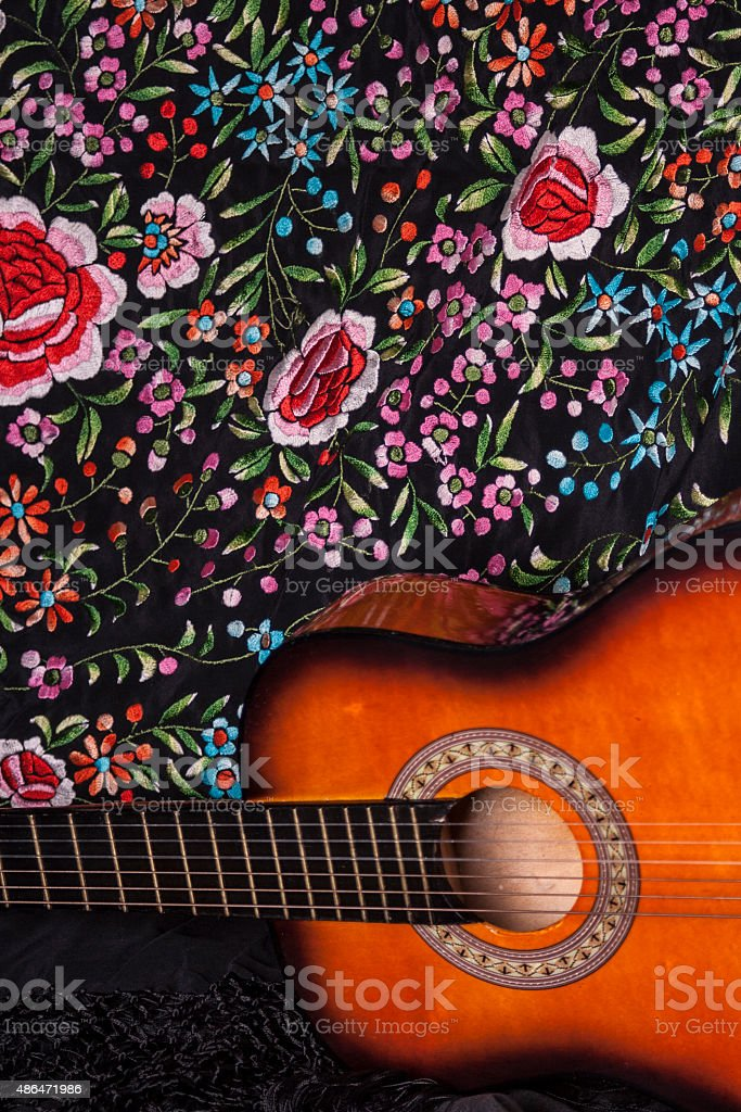 Flamenco I stock photo