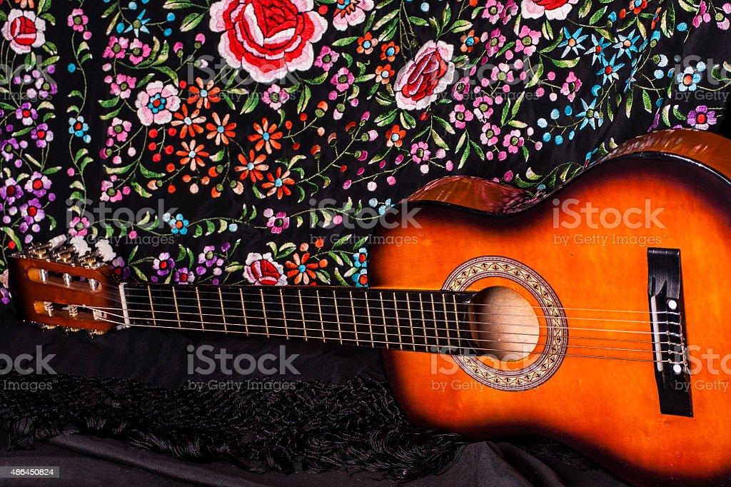 Flamenco II stock photo