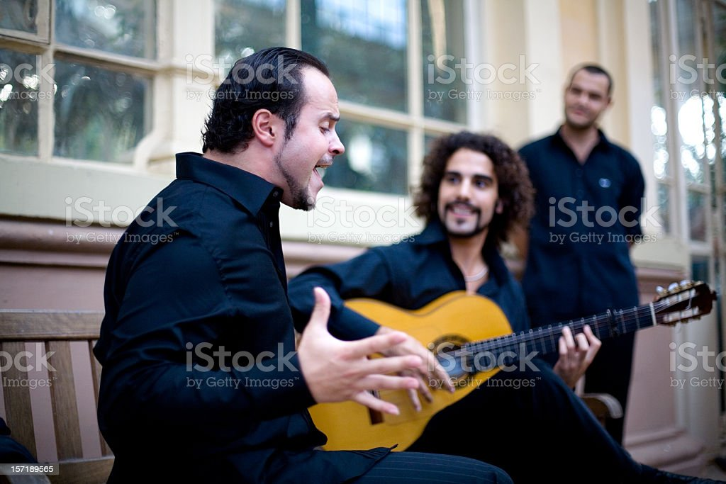 Flamenco passion stock photo