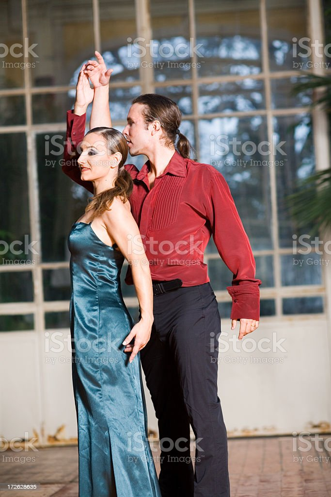 Flamenco Passion royalty-free stock photo