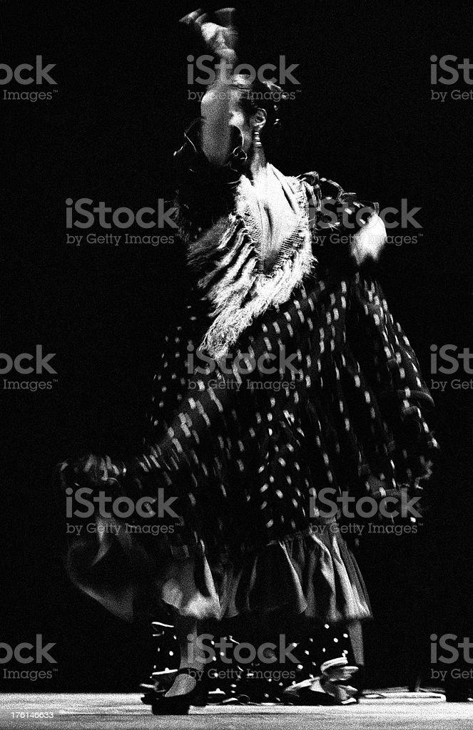 Flamenco pois royalty-free stock photo