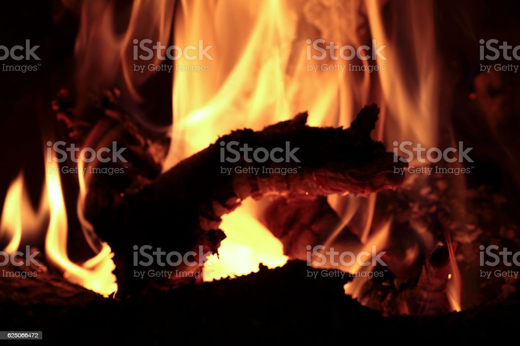 Flames of fire in a fireplace. stock photo