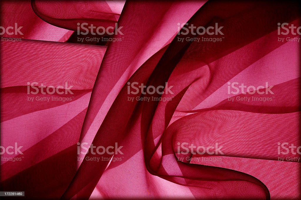 Flaming Pink! royalty-free stock photo