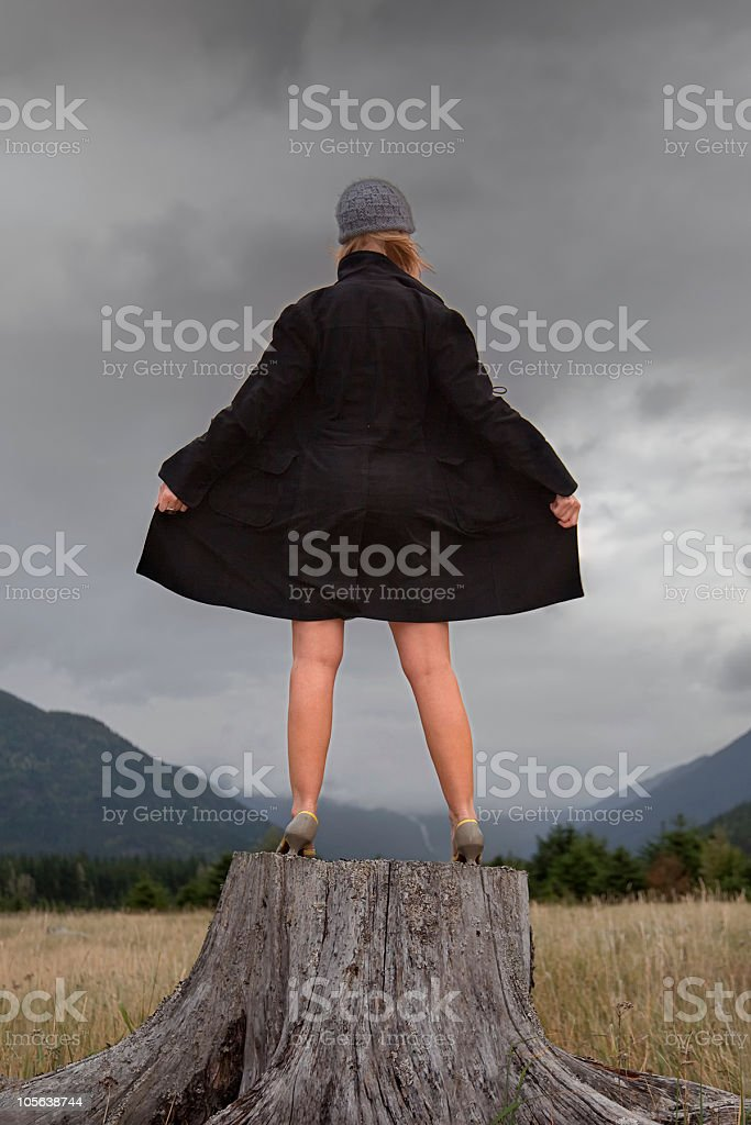 Flasher on a Stump stock photo