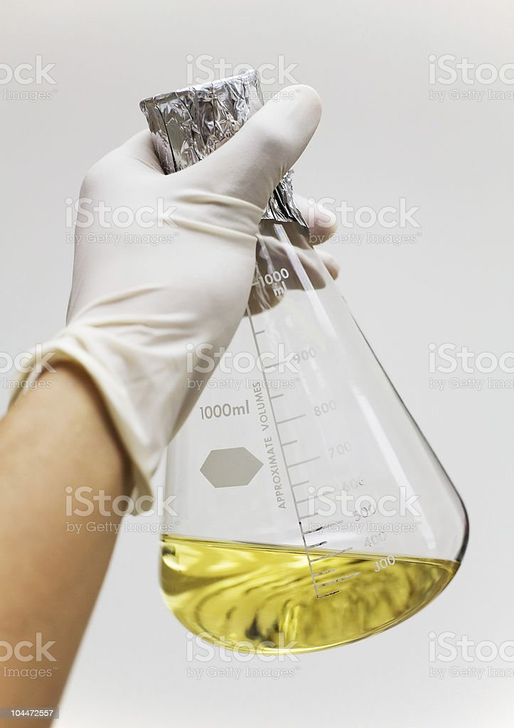 Flask with Growth Media held royalty-free stock photo