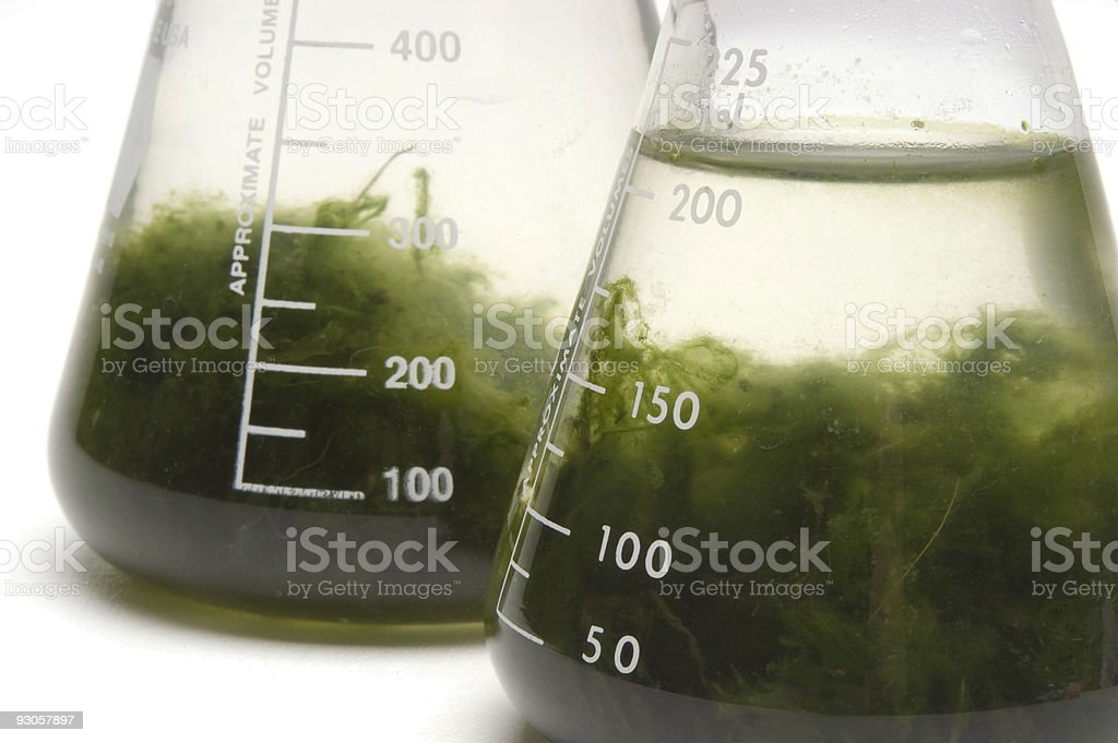 Flasks with Green Goo royalty-free stock photo