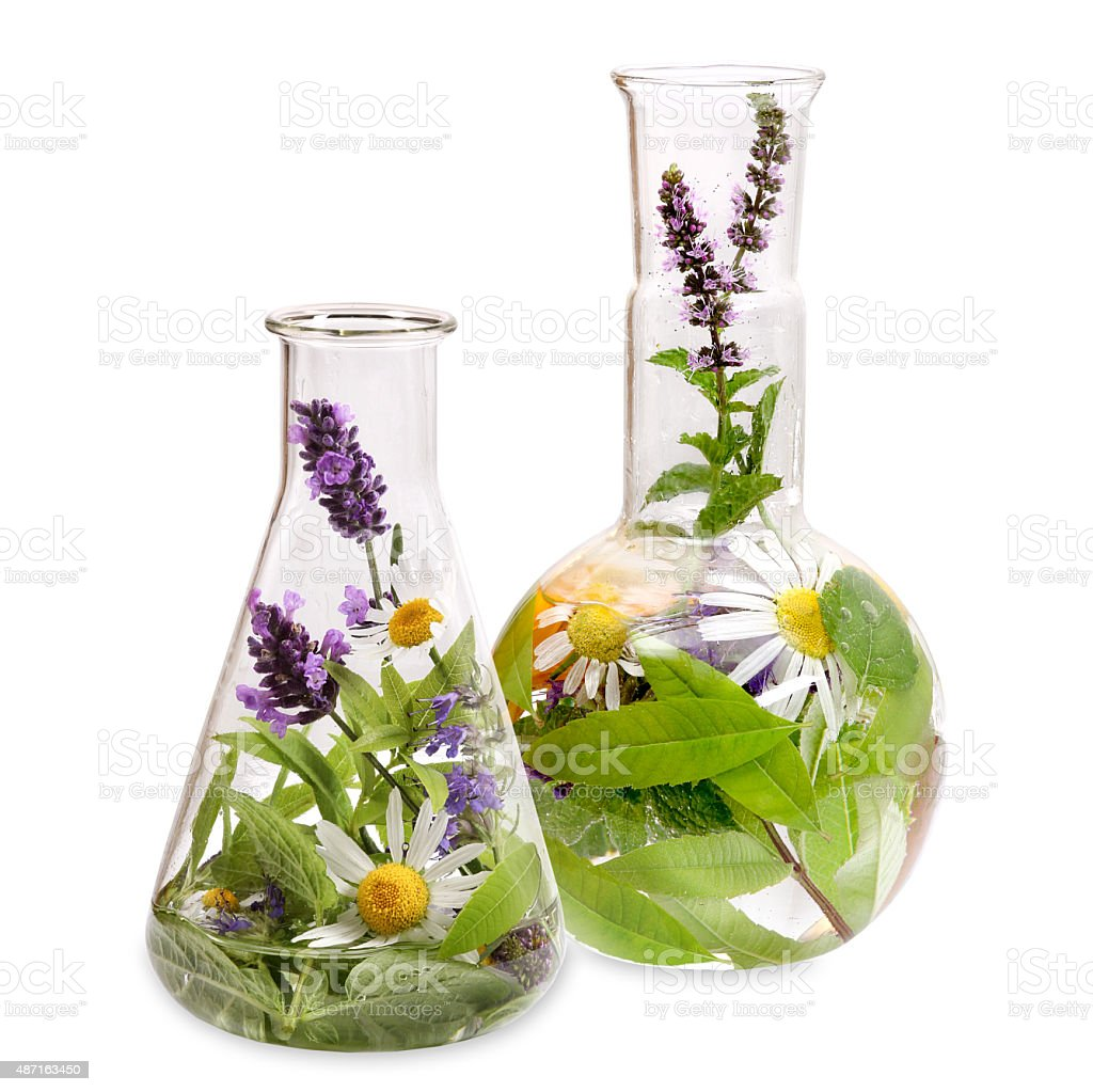 Flasks with medicinal herbs stock photo