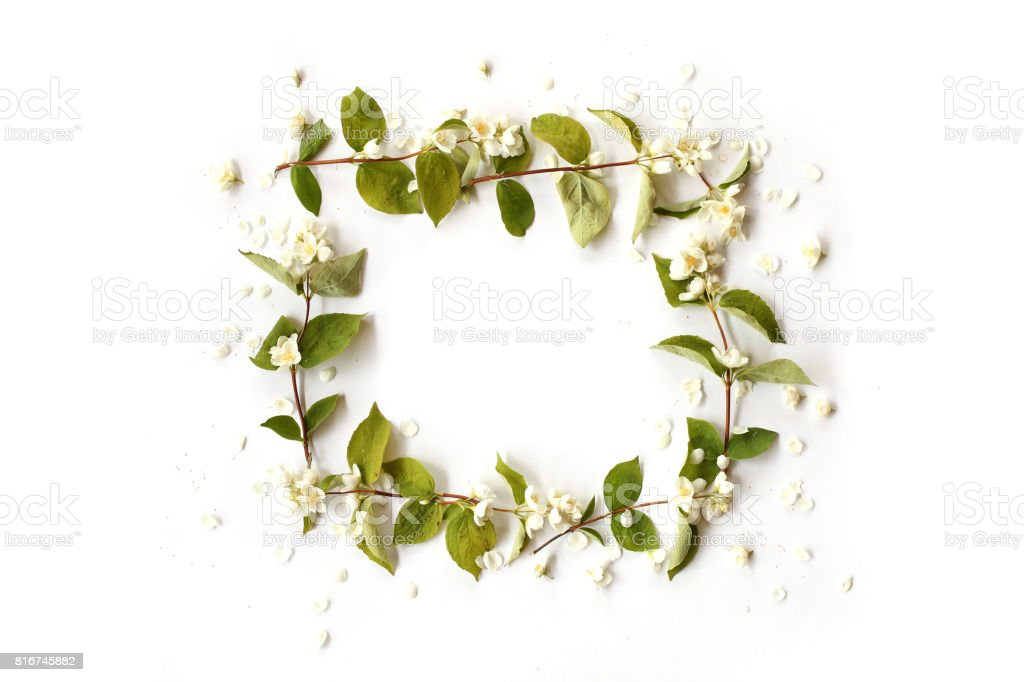 Flat lay border frame with white jasmine petals, flowers, buds and green branches on white background. Top view. stock photo