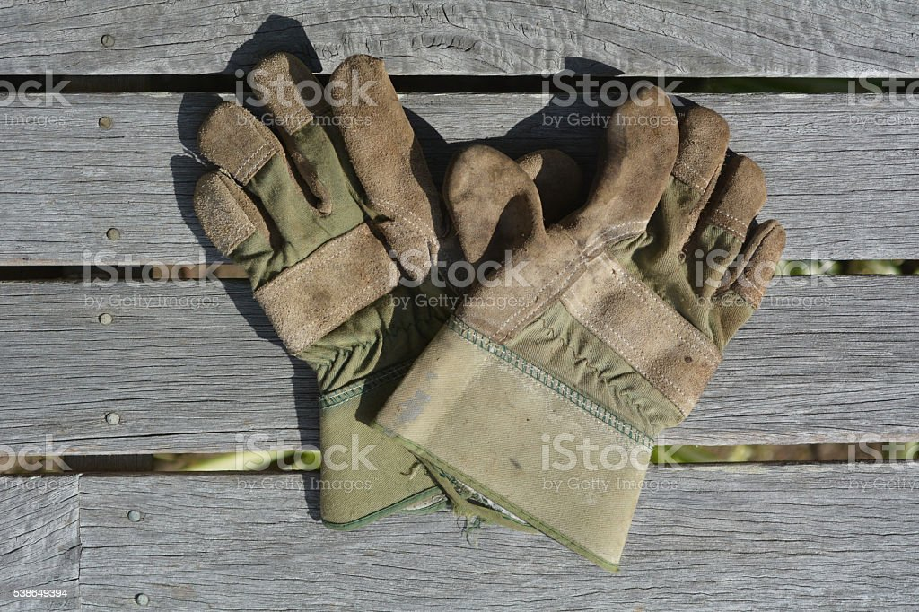 Flat lay of working garden gloves stock photo