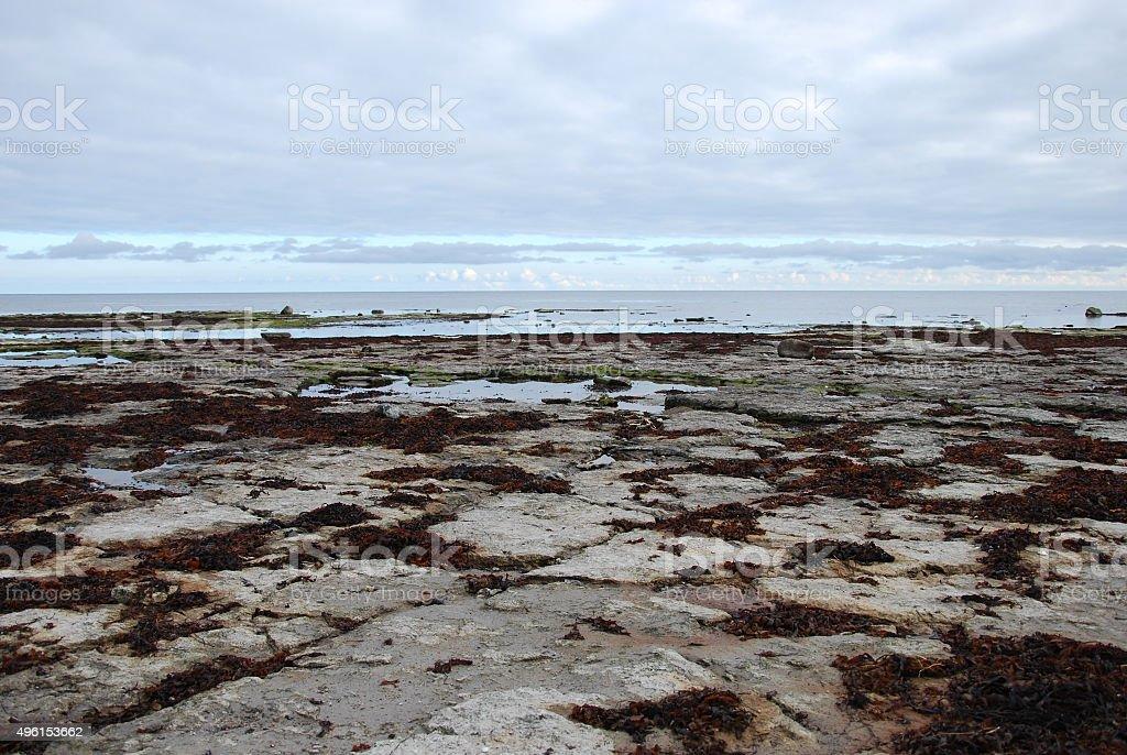 Flat rock coast stock photo
