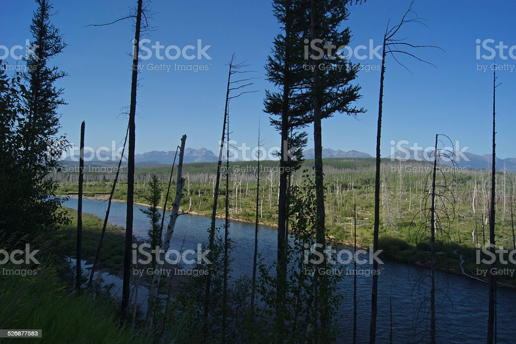 Flathead River Rare Angle stock photo